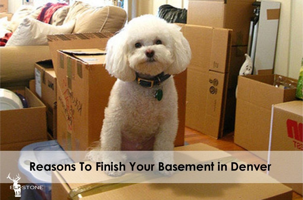 Reasons To Finish Your Basement in Denver